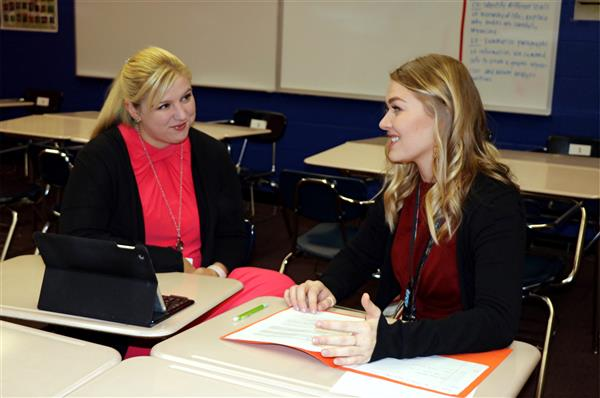 Peer Consultant working with a new teacher