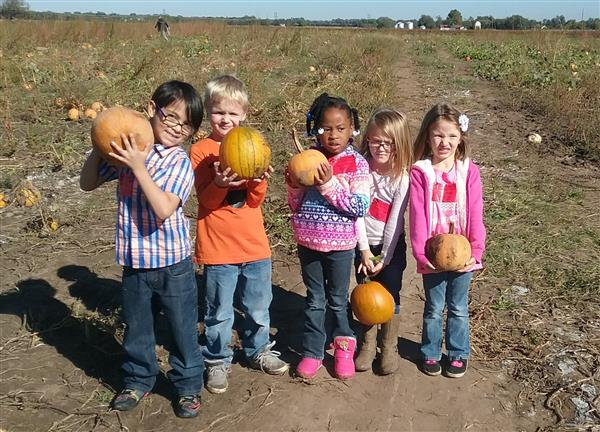 Kindergarten Picks Pumpkins