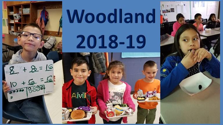 Woodland Elementary / Homepage